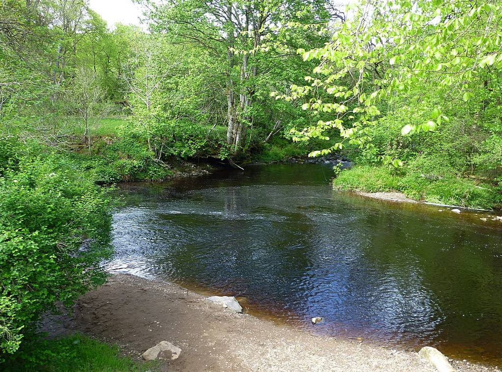 Meeting of River Nethan and Logan Water near Waterside. 3rd June 2015