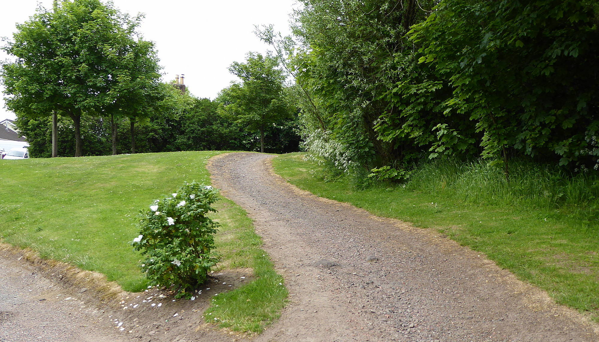 Path from Railway Road to Braehead Road (This was formerly a bogie line carrying coal). 8th June 2018