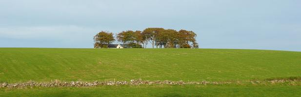 Near Loudoun. South Ayrshire