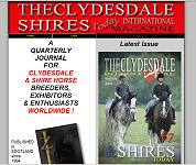 Clydesdale International and Shires Today