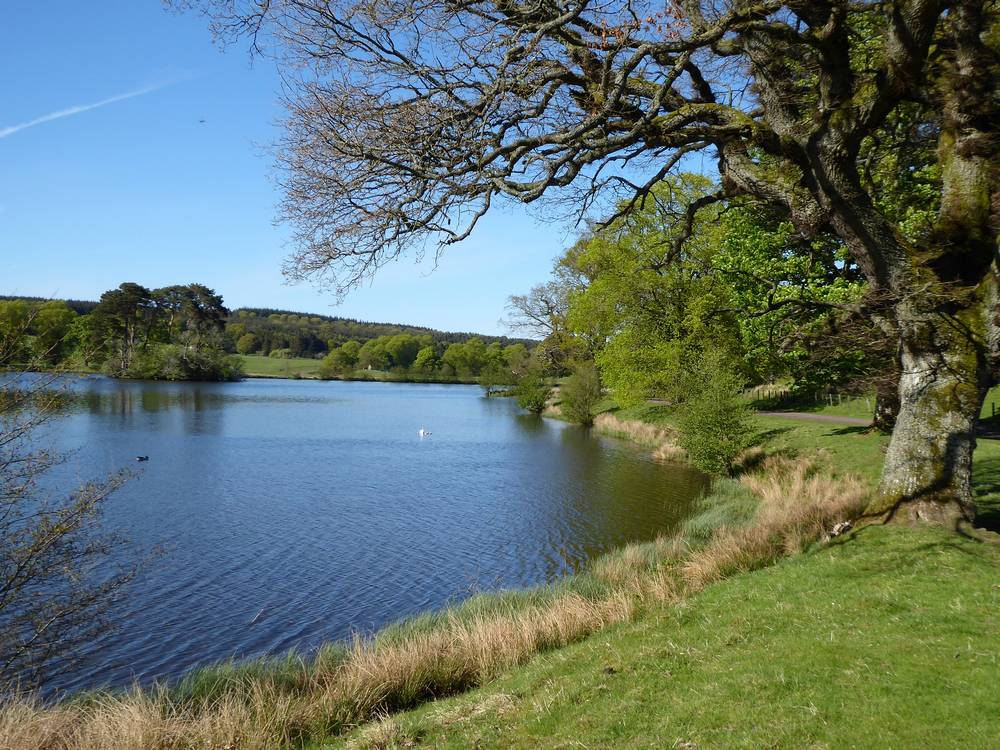Stable Lake, Douglas Estate