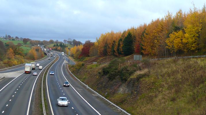 Colours in trees beside the M74 at Lesmahagow