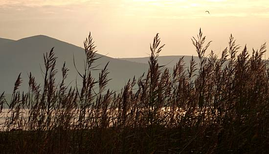 River Nith at sunset